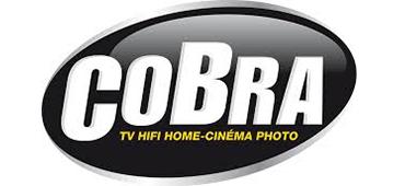 Cobrason - Logo
